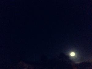 midnight blue sky.jpg