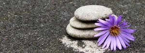 Calming rock with flower
