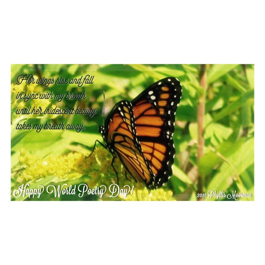 Monarch poem