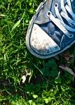 Sneaker in grass